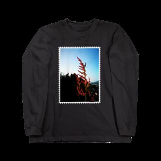 はんぐるぐるぐるの野草シリーズ 「スイバ」 Long sleeve T-shirts