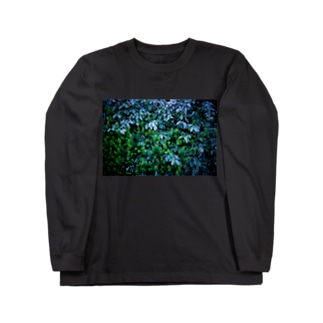 BLUE FOREST Long sleeve T-shirts