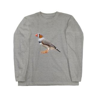 キンカチョウ Long sleeve T-shirts