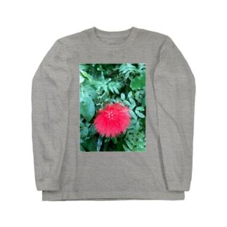 レフア Long sleeve T-shirts