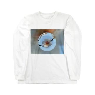 光景 sight737 梅  花 FLOWERS  宙玉(そらたま) ロングスリーブTシャツ