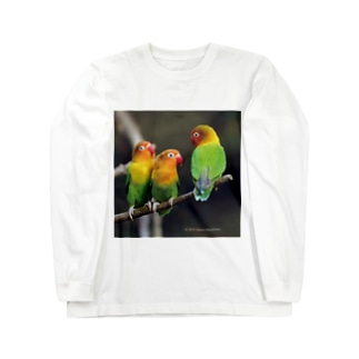ルリゴシボタンインコ ロングスリーブTシャツ