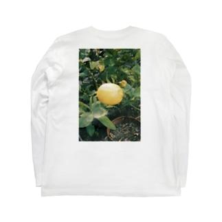 家に成ったレモン Long sleeve T-shirts