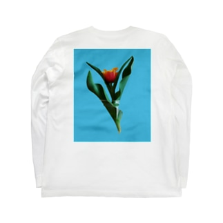 Tulipa cv. lambada   back print T Long sleeve T-shirts