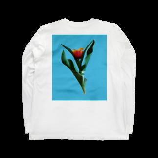 SOILのTulipa cv. lambada   back print T Long sleeve T-shirts