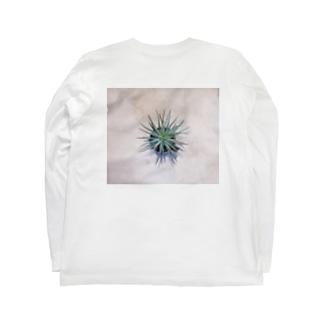 アロエ Long sleeve T-shirts