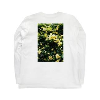木香薔薇 Long Sleeve T-Shirt