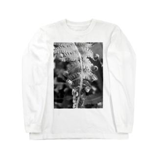 沖縄産のシダ Long sleeve T-shirts