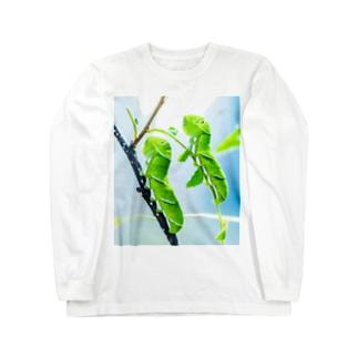 芋虫 Long sleeve T-shirts