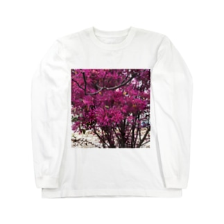 ピンク Long sleeve T-shirts