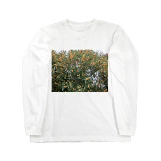 光景 sight740 キンモクセイ 金木犀 花 FLOWERS 壁紙 Long sleeve T-shirts