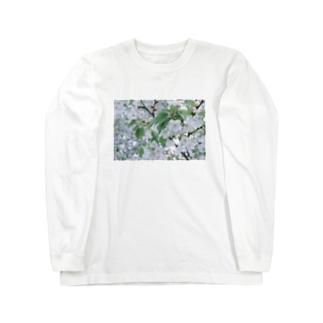 白い花 Long sleeve T-shirts