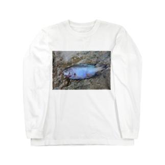 死んだ魚の目_ソラスズメダイ_20180825_0613' Long sleeve T-shirts