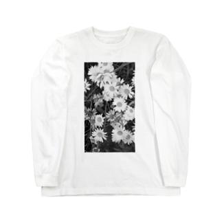masato 4 Long sleeve T-shirts