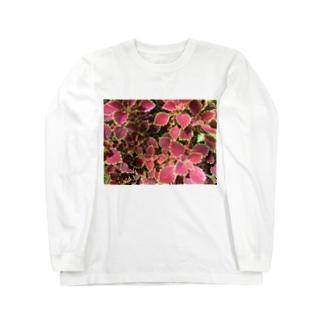 🍁葉っぱ🍁 Long sleeve T-shirts