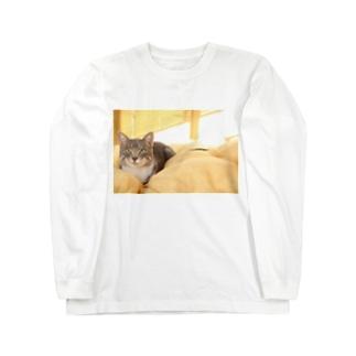 cat_20181116_0681' Long sleeve T-shirts