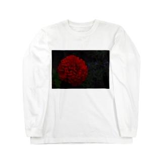 耽美的に咲き誇る一輪の赤い花 Long sleeve T-shirts