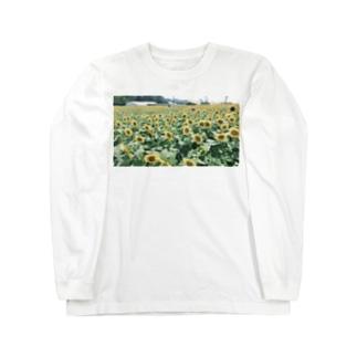 クロップトゥクロットの満開のひまわり Long sleeve T-shirts