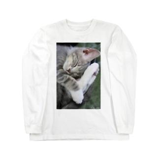 cat_20190227_8341  Long sleeve T-shirts