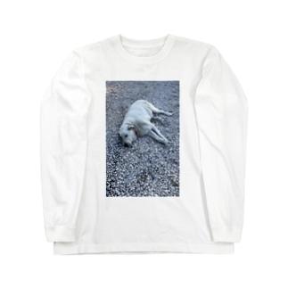 アザラシドッグ Long sleeve T-shirts