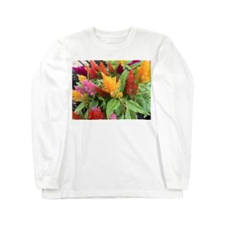 ケイトウ Long sleeve T-shirts