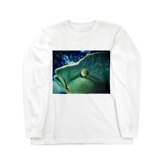 アオブダイ Long sleeve T-shirts