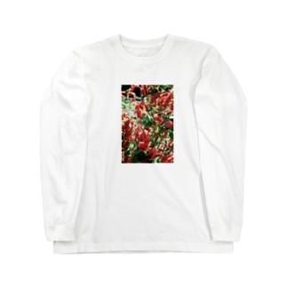 あかいろ Long sleeve T-shirts