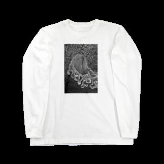 kooriのswim Long sleeve T-shirts