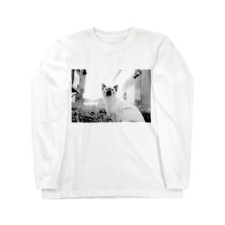 猫ちゃん Long sleeve T-shirts
