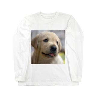 ラブラドール・レトリバーの子犬 Long sleeve T-shirts