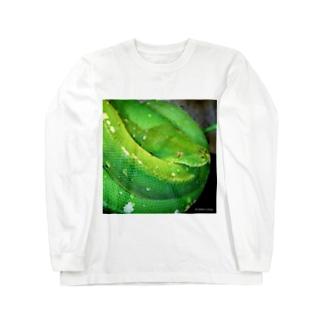 ミドリニシキヘビ Long sleeve T-shirts