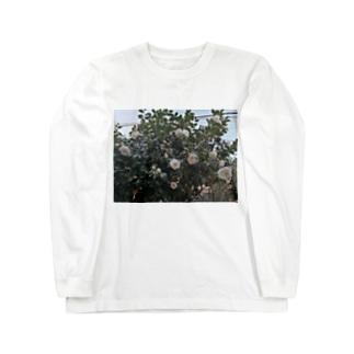 朝咲いてた花 Long sleeve T-shirts