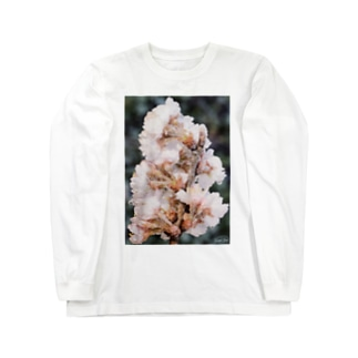 Frozen flower  Long sleeve T-shirts