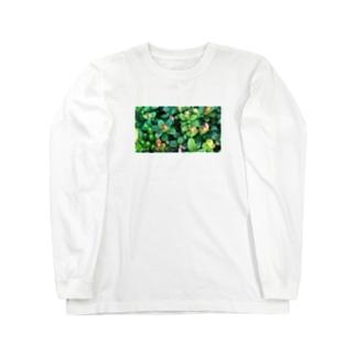 乗鞍岳の高山植物 Long sleeve T-shirts