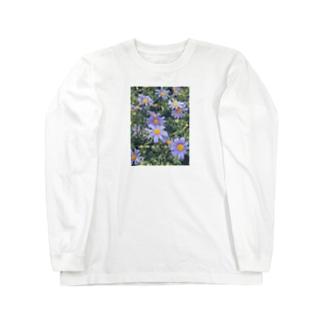 ブルーデージーの花言葉は? Long sleeve T-shirts