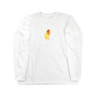 コザクラインコ おすましルチノー【まめるりはことり】 Long sleeve T-shirts
