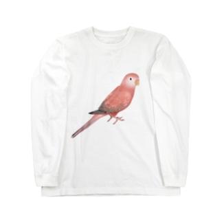 アキクサインコ ピンク【まめるりはことり】 Long sleeve T-shirts