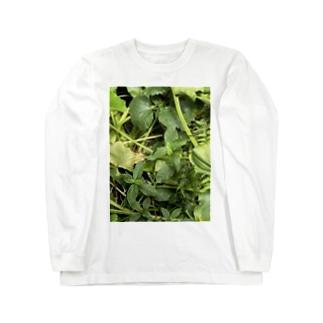 kawachu5の黒蜻蛉 Long sleeve T-shirts