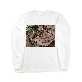 桜 サクラ cherry blossom DATA_P_152 春 spring Long sleeve T-shirts