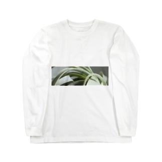 キセログラフィカ Long sleeve T-shirts