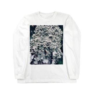 地衣 Long sleeve T-shirts