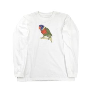 色合いが綺麗なゴシキセイガイインコちゃん【まめるりはことり】 Long sleeve T-shirts