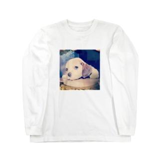 チャロンTシャツ Long sleeve T-shirts
