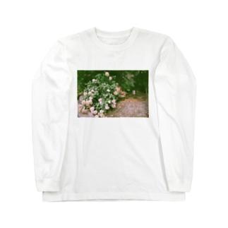 アジサイとそれを見るための椅子 Long sleeve T-shirts