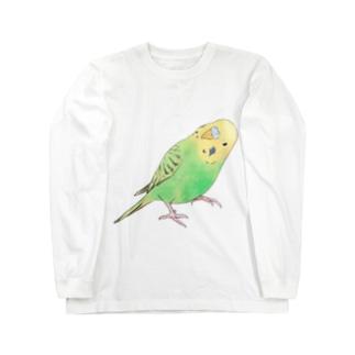 首傾げセキセイインコ ピーちゃん【まめるりはことり】 Long sleeve T-shirts