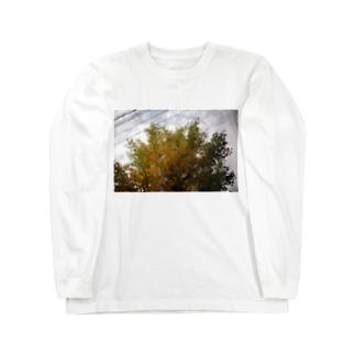 秋と直線 Long sleeve T-shirts