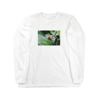 いつぞやの野いちご Long sleeve T-shirts