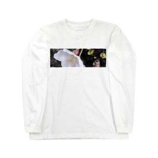 サクラの夢 Long Sleeve T-Shirt