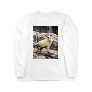 ゴールデンターキン Long sleeve T-shirts