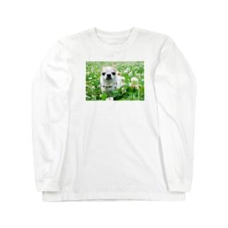 akane_artのカラフルチワワ(クローバー) Long sleeve T-shirts